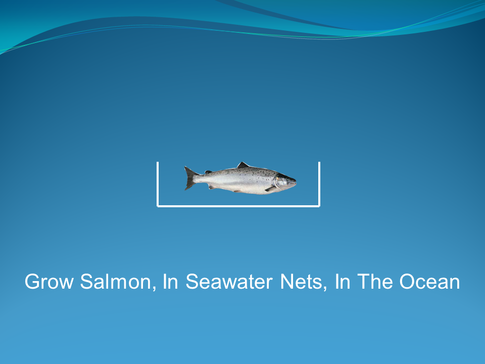 Recirculating Aquaculture Systems - Comparison To Net Pen Systems