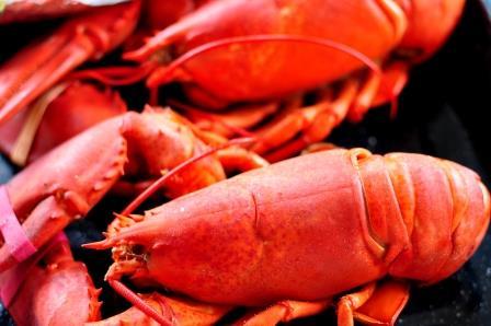 Maine's World Wide Brand - Lobster