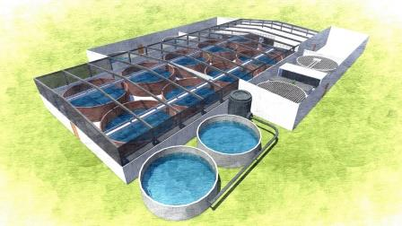Recirculating Aquaculture - Birds Eye View of Palom Aquaculture's RAS, Cut Out Rendering