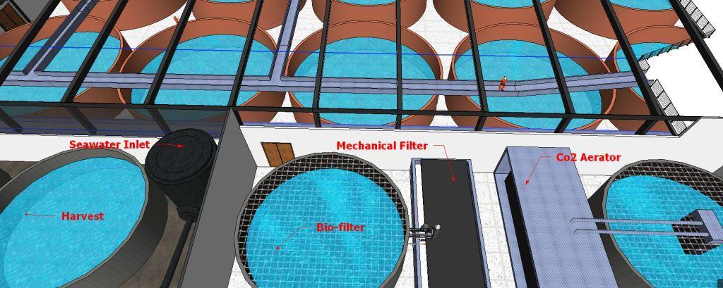 Aquaculture Engineering - Palom